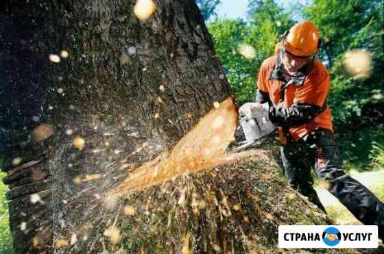 Спил деревьев различной сложности Волжск