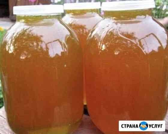 Мёд разнотравья Грозный