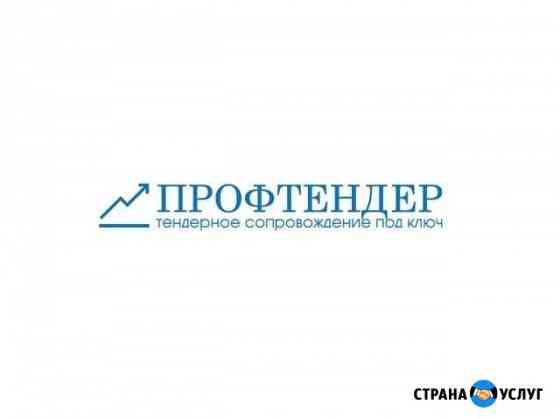 Тендерное сопровождение Астрахань