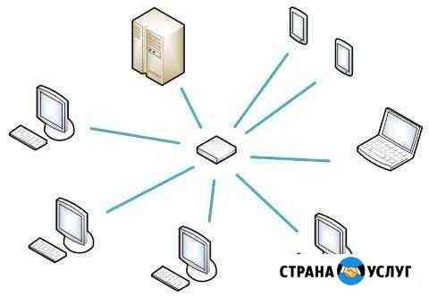 Специалист в области интернета и сетей Курск