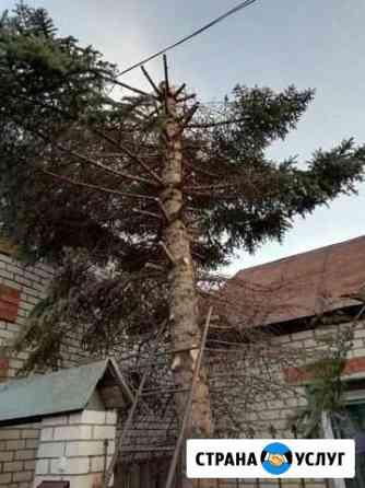 Спил садовых деревьев Ульяновск
