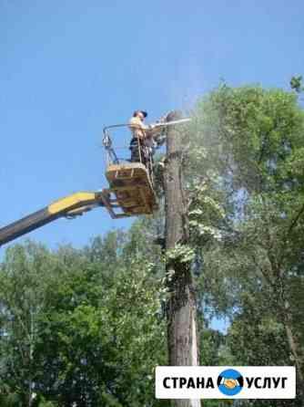 Спил деревьев, расчистка участков, вывоз отходов Ахтубинск