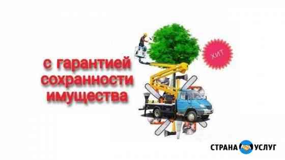 Спил деревьев во Владимире и Области Владимир