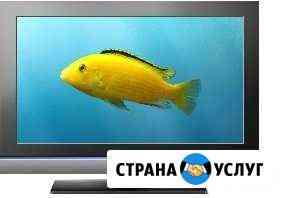 Ремонт мониторов и телевизоров Брянск