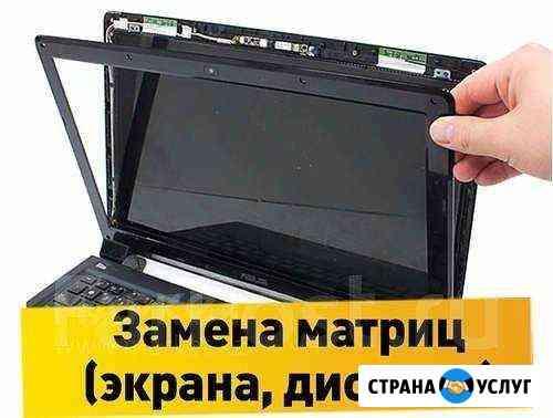 Замена матриц (экрана, дисплея) Петропавловск-Камчатский