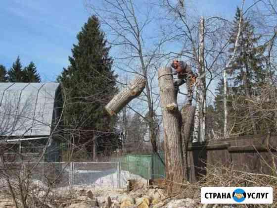 Спил деревьев Моршанск