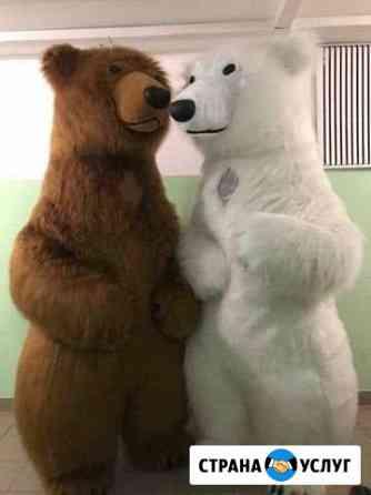 Медведи на праздник,детский праздник. медведь Архангельск