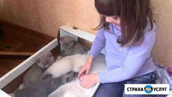 Няня Ухта