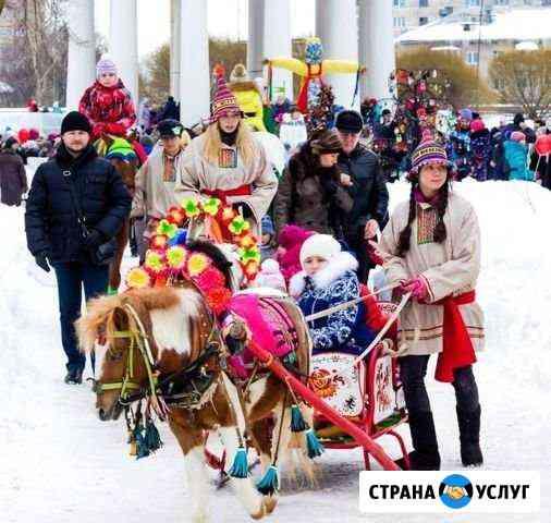 Лошадь на праздник Пермь