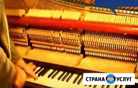 Настройка и ремонт фортепиано роялей,баянов Салават