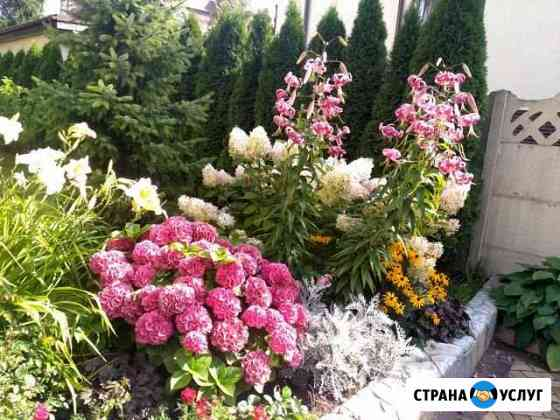 Садовник Калининград