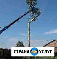 Выпиловка удаление деревьев, кустарников Ржев