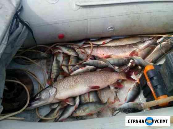 Отдых на таежном озере Пермь
