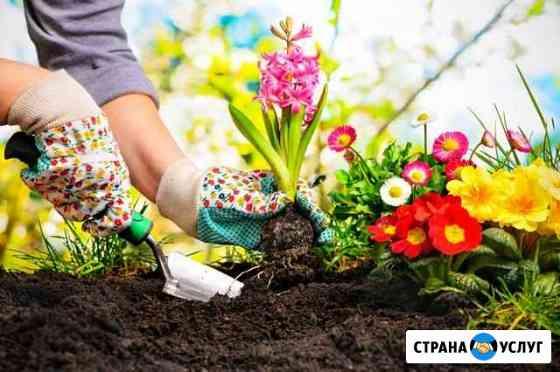 Садовник Астрахань