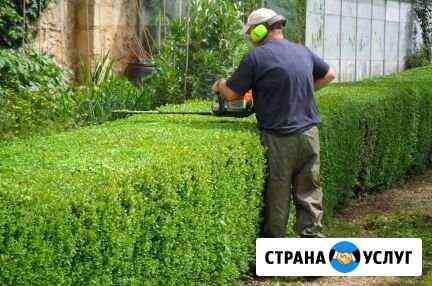 Пакос траву, обрезка живой изгороди Иркутск