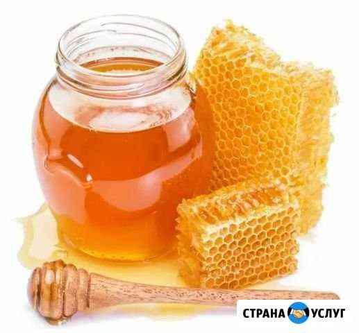 Свежий урожай меда 2020 Невьянск
