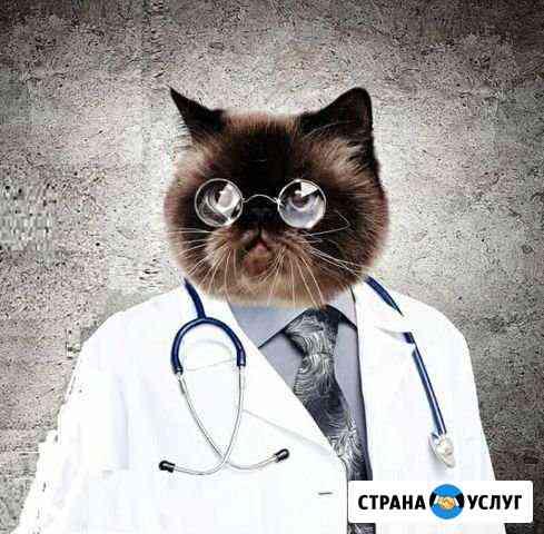 Массаж Иваново