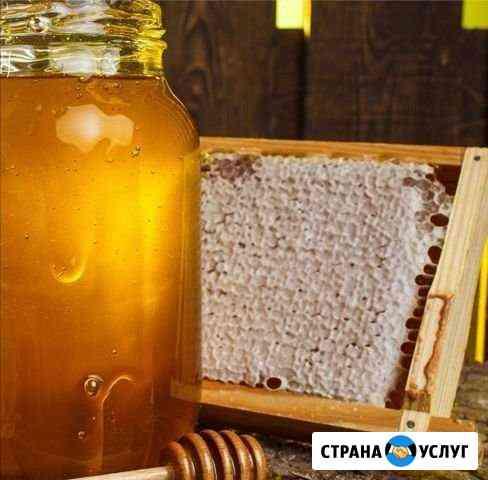 Мёд луговой Усть-Лабинск