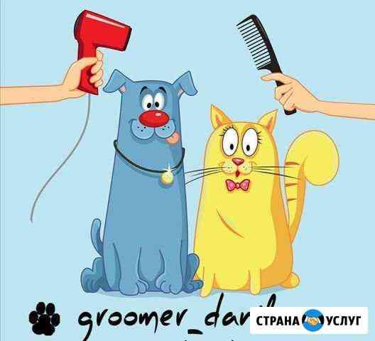 Грумер Ленинск-Кузнецкий