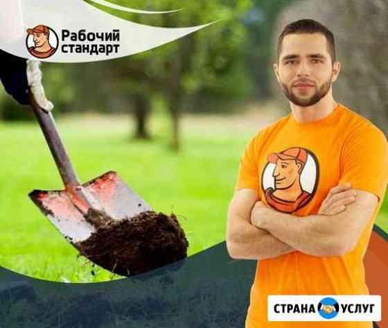 Земляные работы Новосибирск