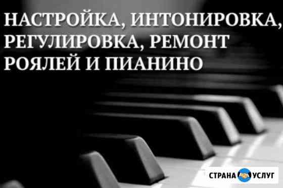 Настройка,ремонт,фортепиано(пианино, рояль) Новый Уренгой