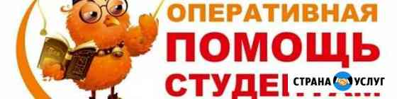 Помощь студентам Урюпинск