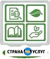 Экологическая документация Казань