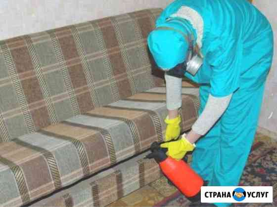 Уничтожение клопов тараканов клещей Иваново