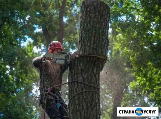 Удаление деревьев Обнинск
