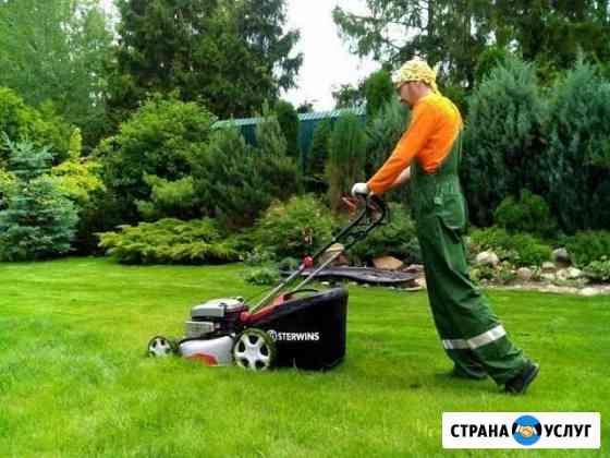 Покос травы газонокосилкой Константиновск