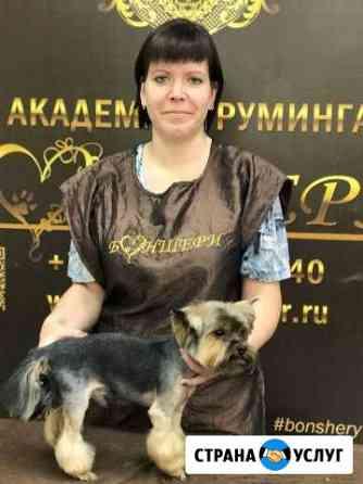 Стрижка собак и кошек Брянск