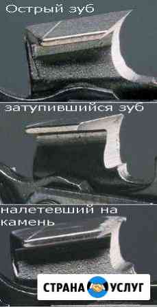 Заточка цепи Камышлов