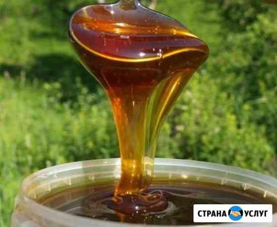 Свежий гречишный мёд (с доставкой) Омск