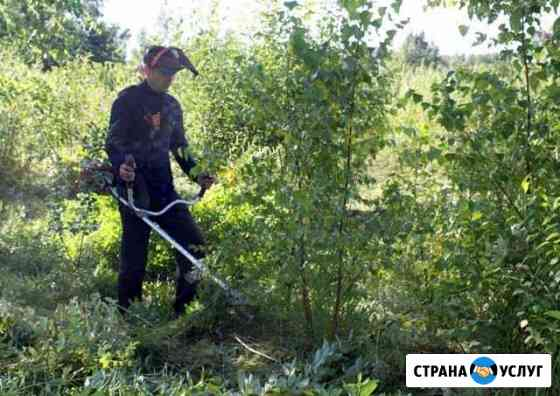 Покос травы, уборка участка Тамбов