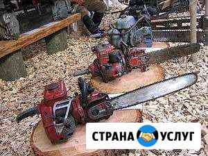 Прокат бензопилы Таганрог