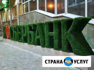 Топиарные буквы Барнаул