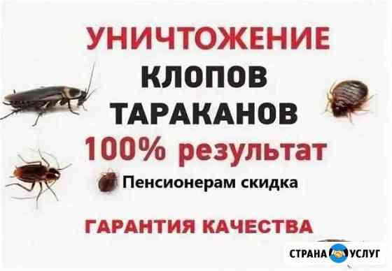 Дезинсекция Уничтожение Тараканов, Клопов Ахтубинск