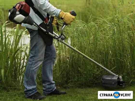 Покос травы Сарапул