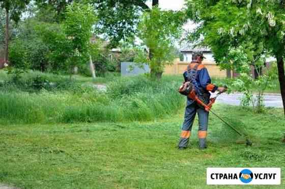 Покос травы. Спил садовых деревьев. Качественно Переславль-Залесский