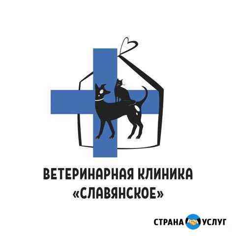 Ветеринарная клиника Калининград