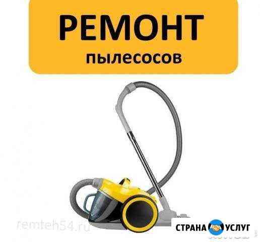 Ремонт пылесосов Нерехта