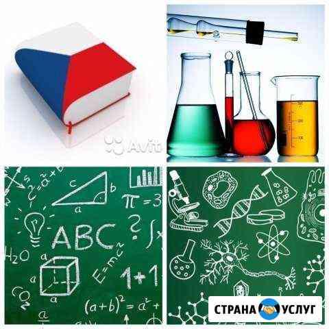 Репетитор по биологии, химии, чешскому языку Калининград