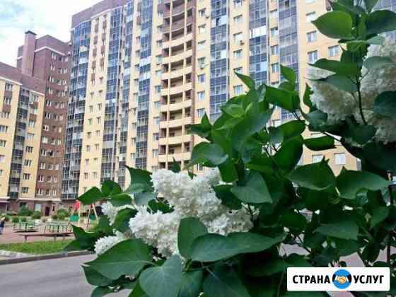 Продажа вашей недвижимости на вторичном рынке Санкт-Петербург