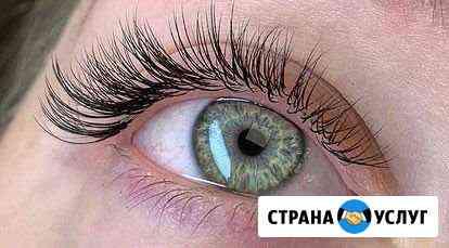 Обучение ламинированию ресниц, оформлению бровей Нижний Новгород