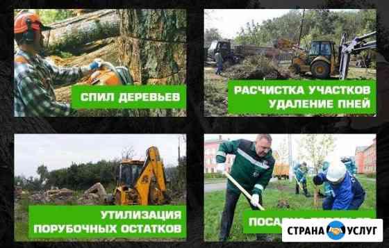 Спил деревьев / корчевание пней / обрезка / сад Ставрополь