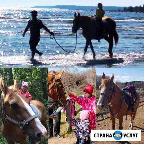Конные прогулки и занятия верховой ездой Высоцк