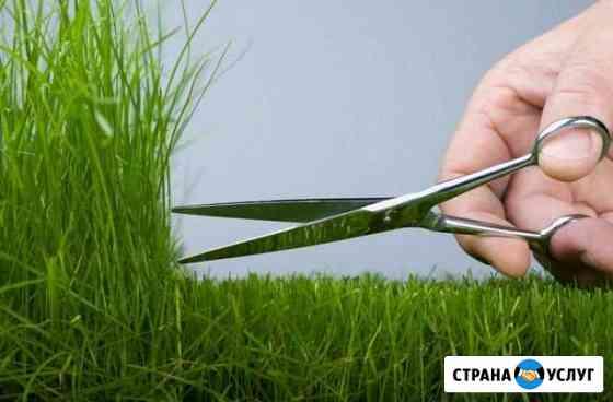Скос травы мотокосой Тайшет