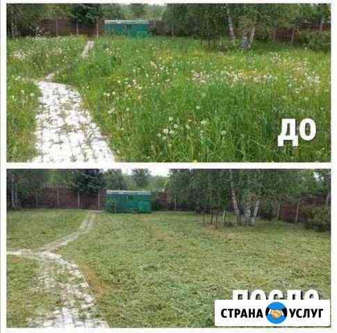 Покос травы, спил Калининград