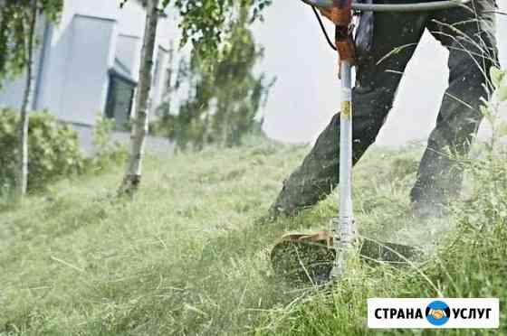 Пашка покос травы вывоз мусора уборка Ждановский