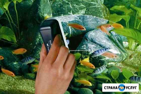 Обслуживание аквариумов Кострома